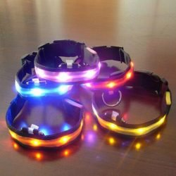 LED Nylon Night Safety Dog Collar