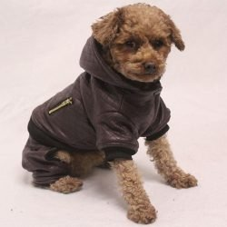 Boheme Leather Dog Jacket