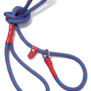 Hiking Rope Dog Leash & Collar