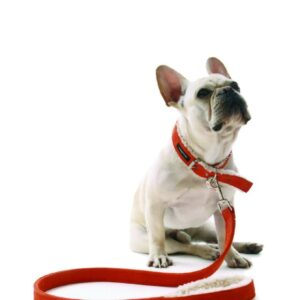Suede Shearling Dog Collar and Leash
