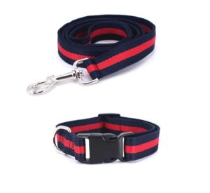 Pucci Stripe Dog Leash & Collar Set