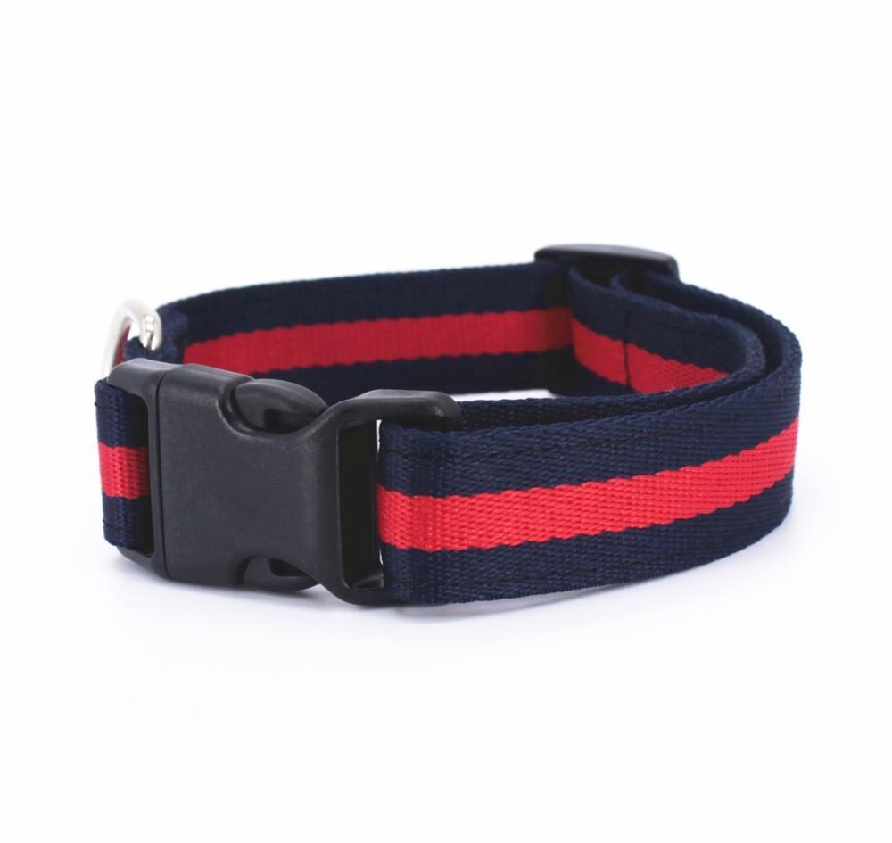 Pucci Stripe Dog Leash & Collar Set