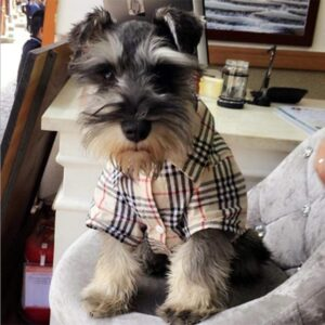Furberry Dog Shirt