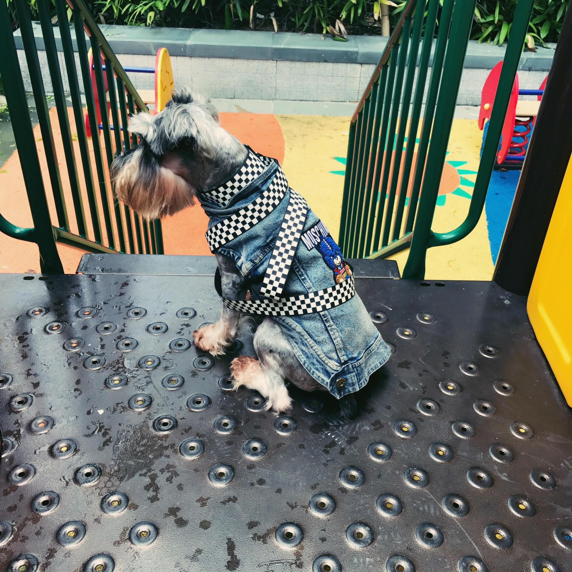Checkerboard Dog Leash Set