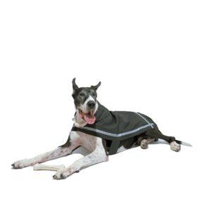 London Fog All-Weather Reflective Dog Raincoat