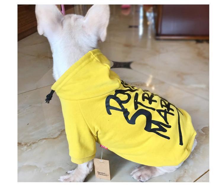 DSM Dog Hoodie