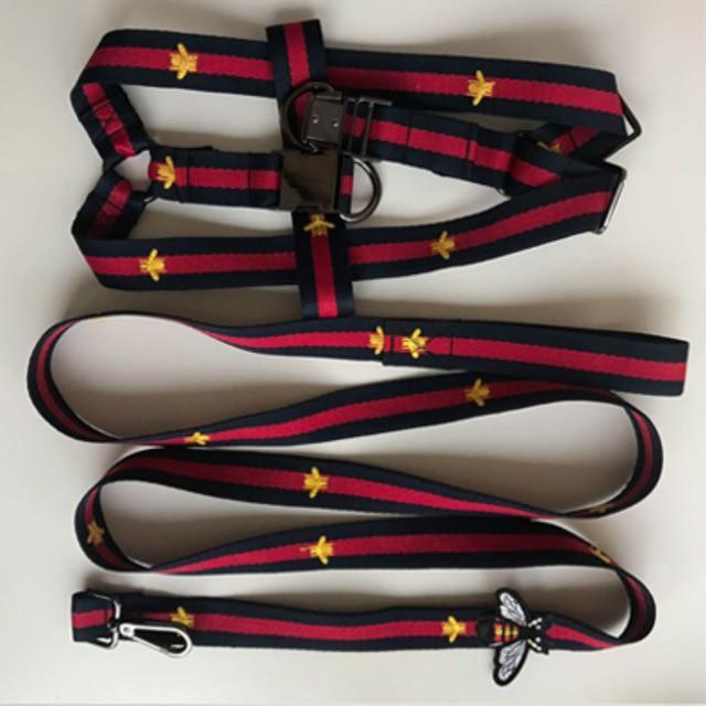 Pucci Bee Leash & Harness Set
