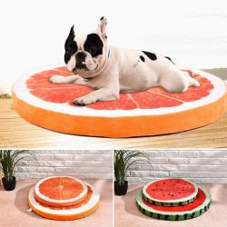 Lazy Fruitz Dog Bed