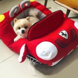 Furrari Dog Bed