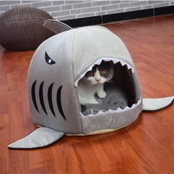 Pup Shark Cave Dog Bed