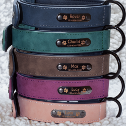 Premium Custom Engraved Dog Collar