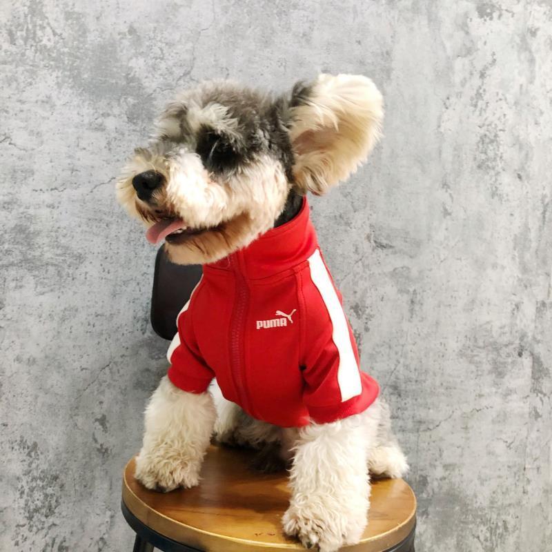 Puma Dog Track Jacket