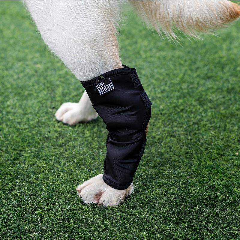 SPS Dog Leg Brace