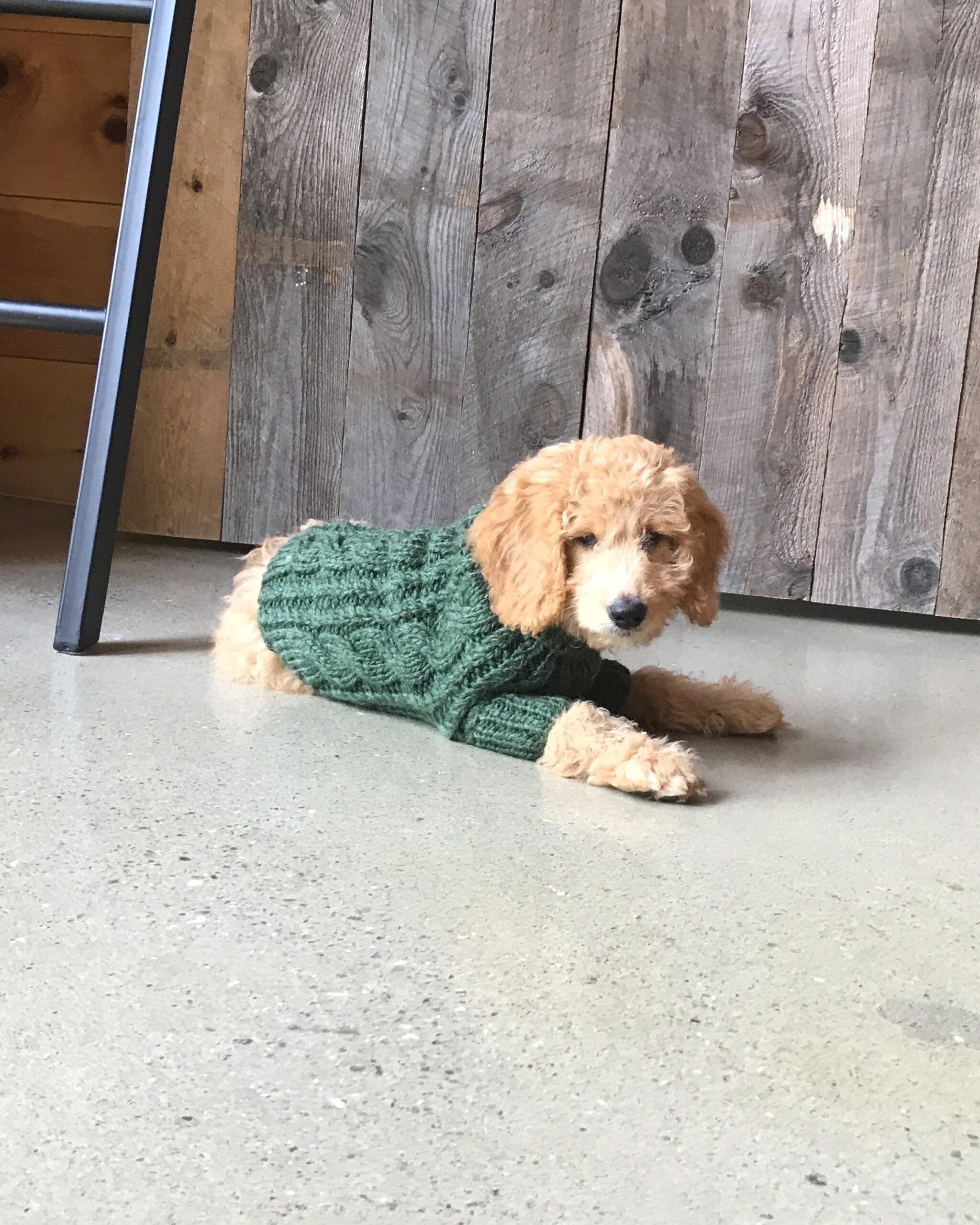 Fisherman Dog Sweater