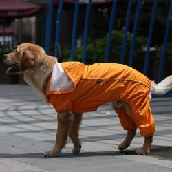 Rain Rebel Dog Raincoat - Orange