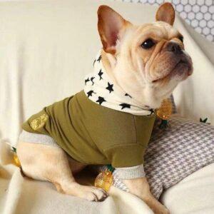 PupStar Dog Hoodie