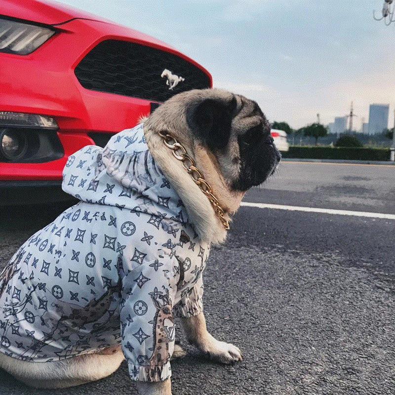 LV Dog Rain Jacket - Supreme Paw Supply