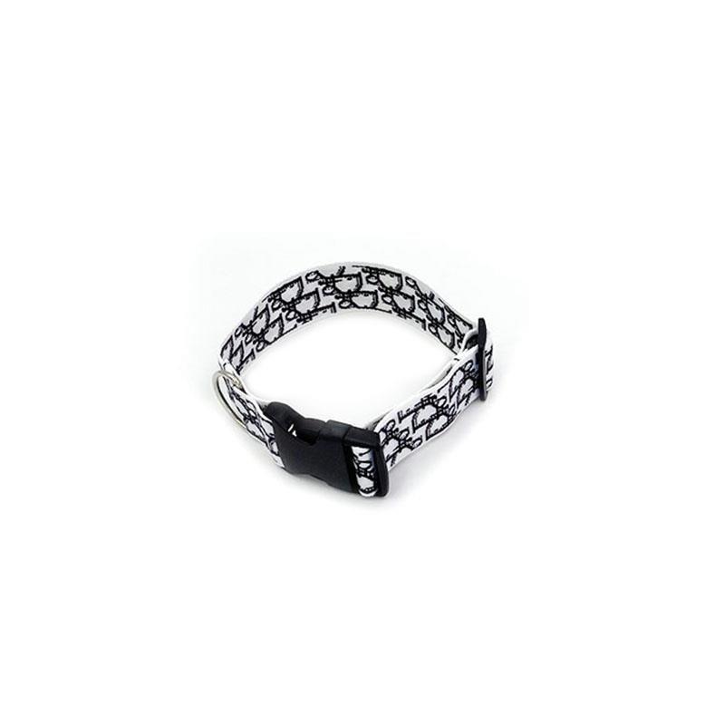 Dogior Collar & Leash Set