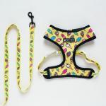 Yellow Harness-Leash