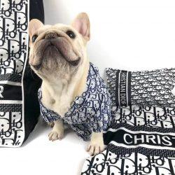 Dogior Luxury Dog Bed Set