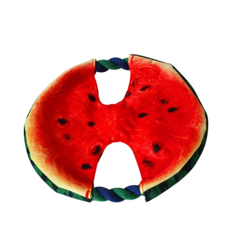 Watermelon Dog Toy