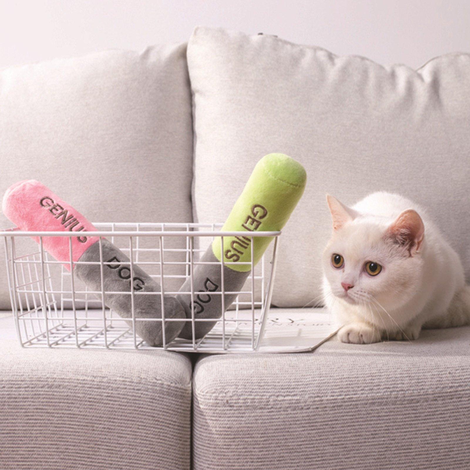 Genius Plush Dog Toy
