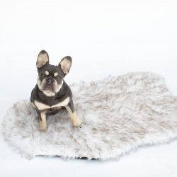 Shaggy's Faux Fur Calming Dog Bed