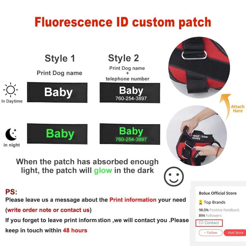 Fido's Personalized No Pull Dog Harness – Purple