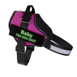 Fido's Personalized No Pull Dog Harness – Rose Red