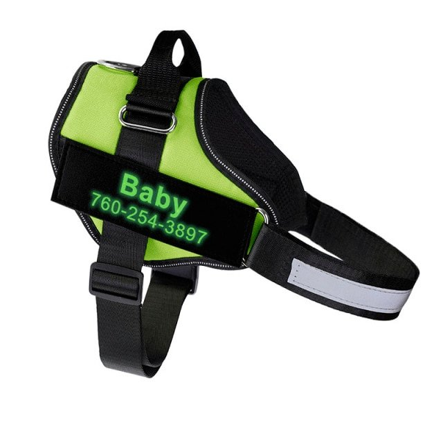 Fido's Personalized No Pull Dog Harness – Green