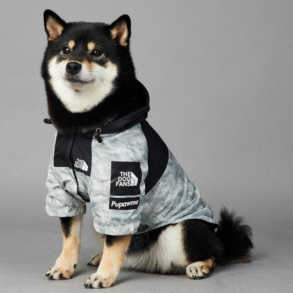 Dog Fans Dog Jacket