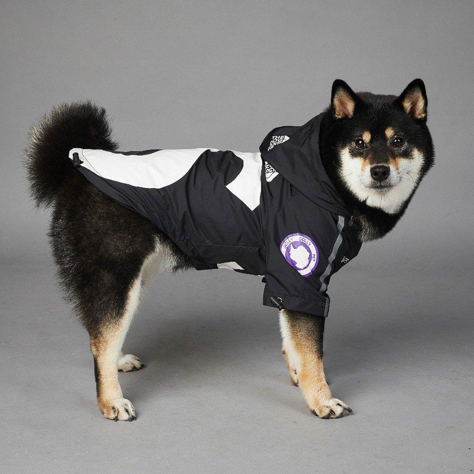 """Dog Fans """"S"""" Dog Jacket"""