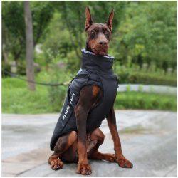 Rosco's Insulated Dog Coat