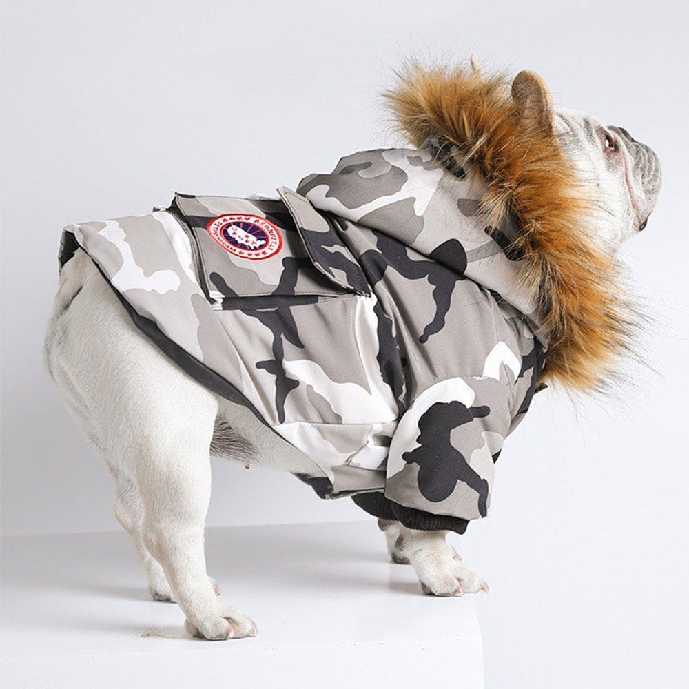 Artik Feather Down Dog Coat